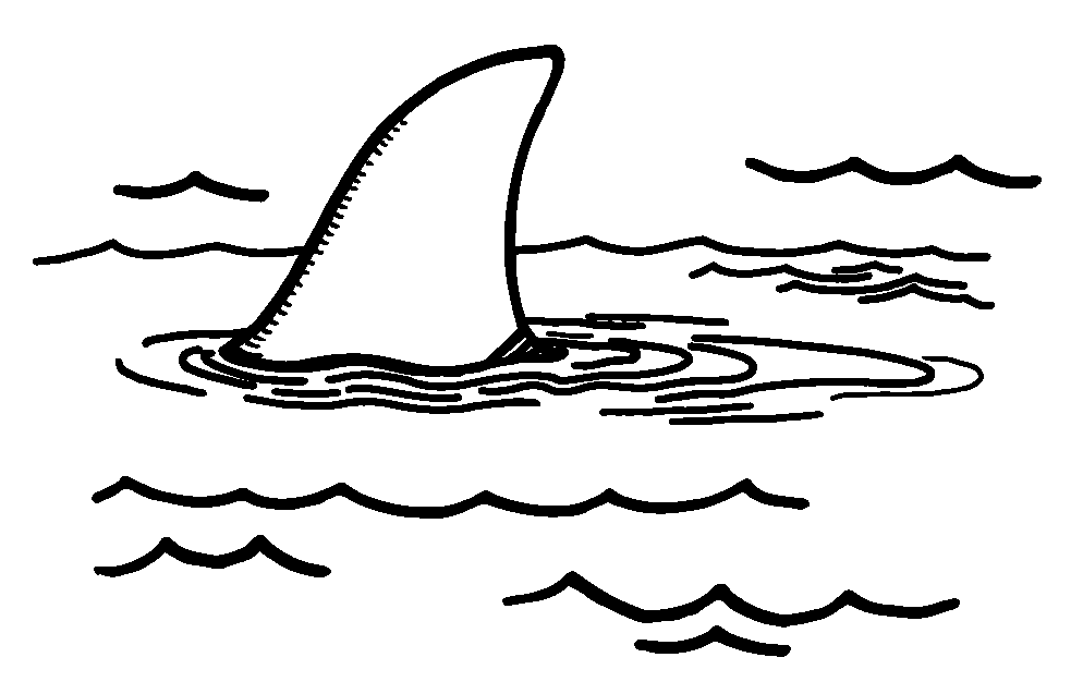 Fins clipart black and white Keywords shark art black and