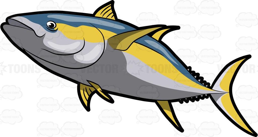 Tuna clipart yellowfin tuna #10