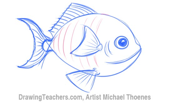 Fins clipart fish drawing Draw How Fish How Draw
