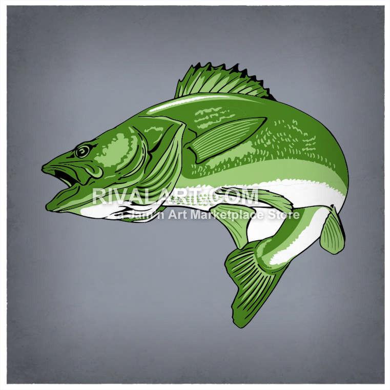 Fins clipart gills Clipart Fins Graphic Fins Fishing