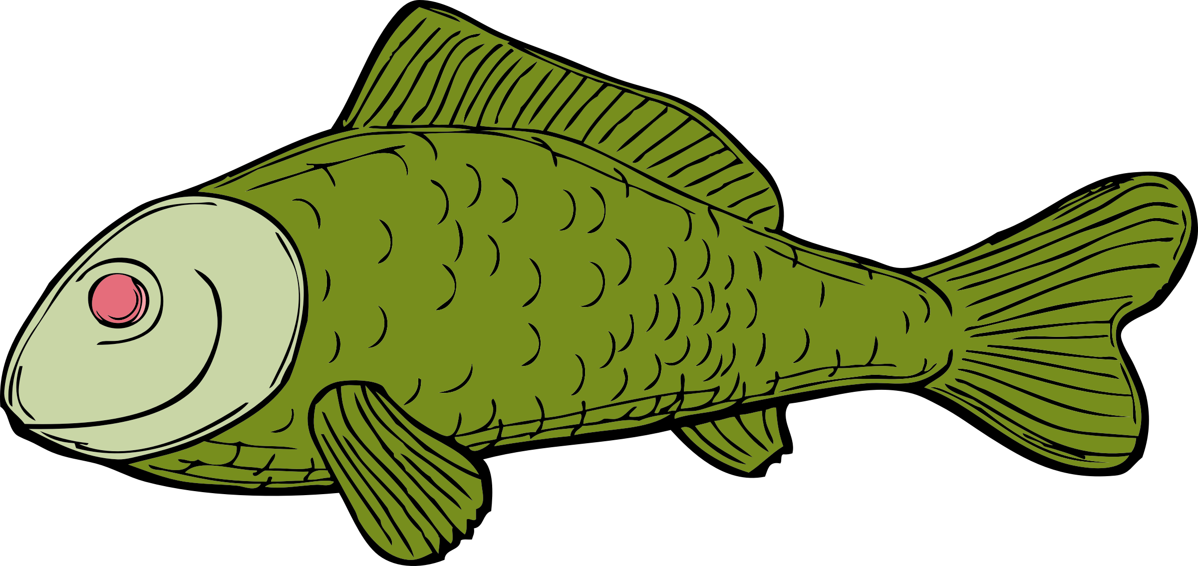 Fins clipart green fish Fish fish Clipart green green