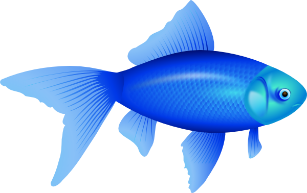 Larger clipart fish product Photo#19 Fin Fish fin Art