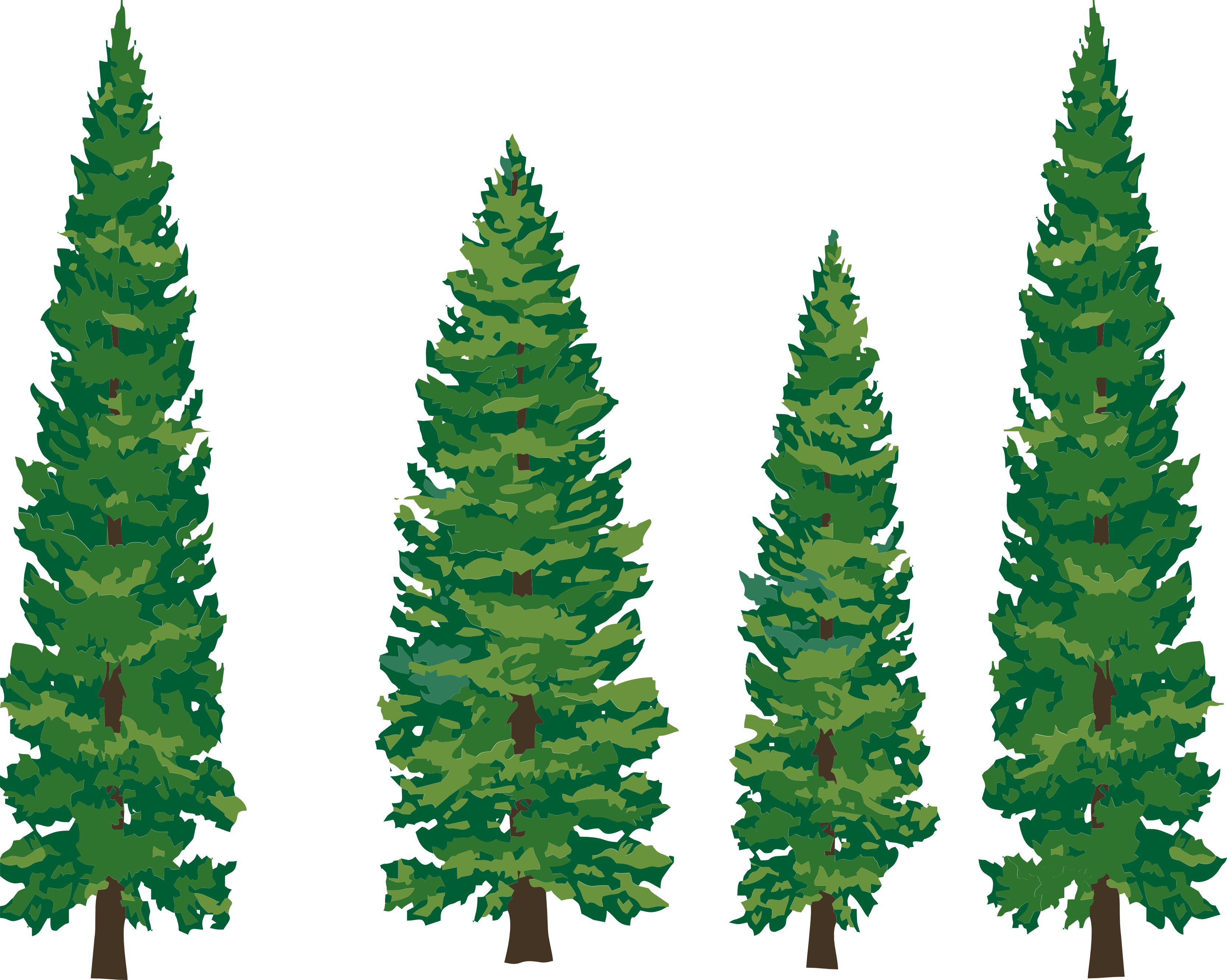 Pine clipart forest tree Tree trees pine black Clip