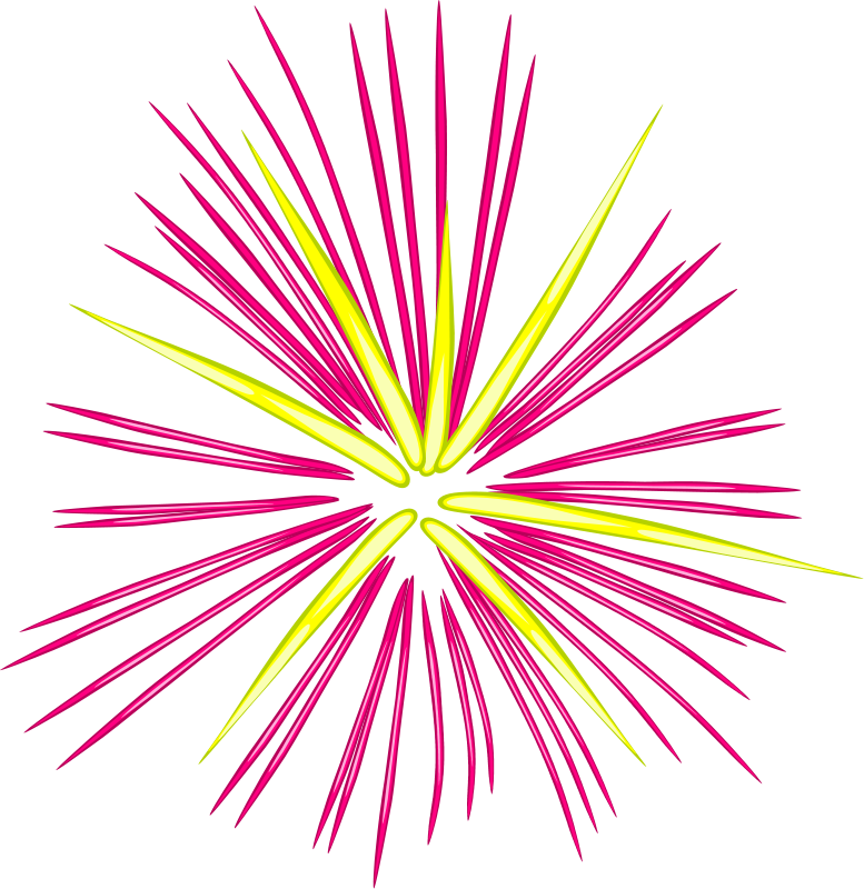 Fireworks clipart #11