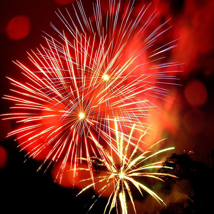 Fireworks clipart function On Fireworks about best Pinterest