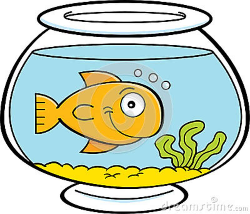 Pet clipart goldfish bowl Fish Gold Panda goldfish%20bowl%20clipart Free