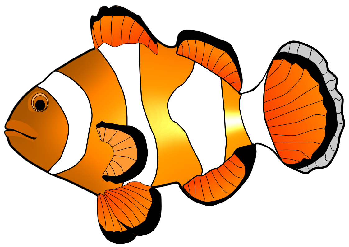 Fish clipart And fish art fish and