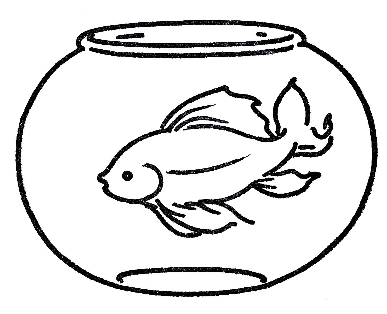 Pet clipart goldfish bowl Clip on Art  Goldfish