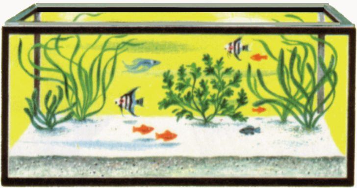 Fish Tank clipart Tank Download Tank clipart clipart