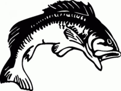 Fisherman clipart bass fishing Art Fish Clip Free Clipart