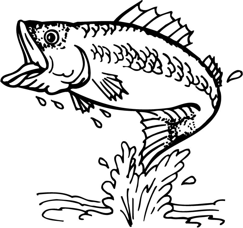 Fisherman clipart bass fishing Your project clip Fish Cake
