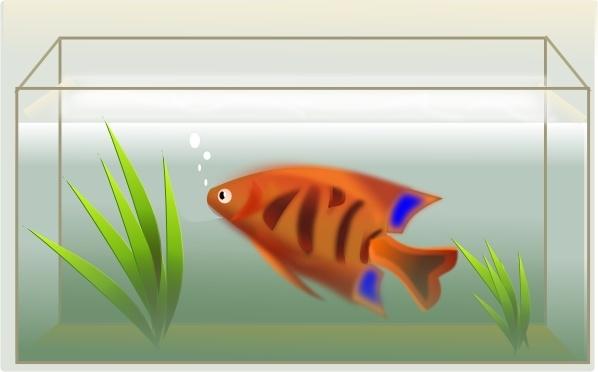 Fishtank clipart Svg vector art drawing svg
