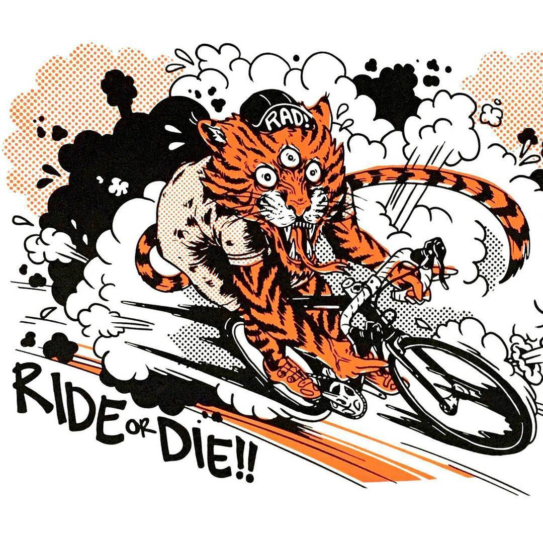 Fixie clipart race bike Pics and DIE check more