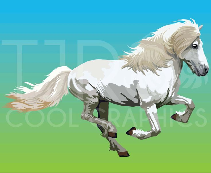Fjord clipart Fjord Horse Clipart Carnival Chincoteague warmblood 28 Printable