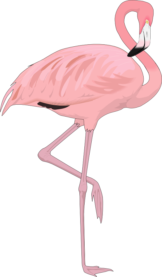 Flamingo clipart & flamingo4 to Public Art