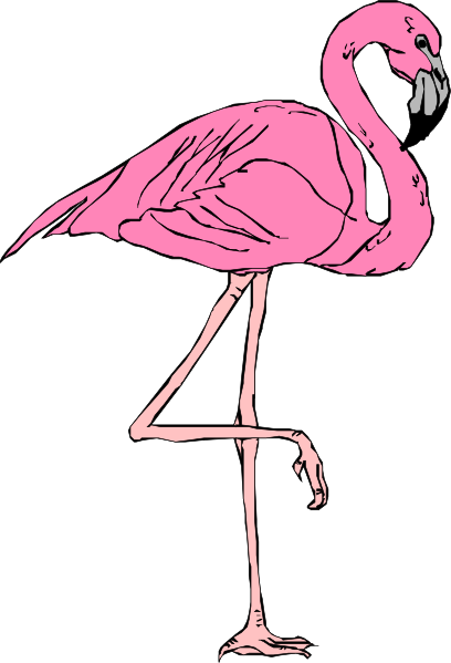 Flamingo clipart For pink clip use project