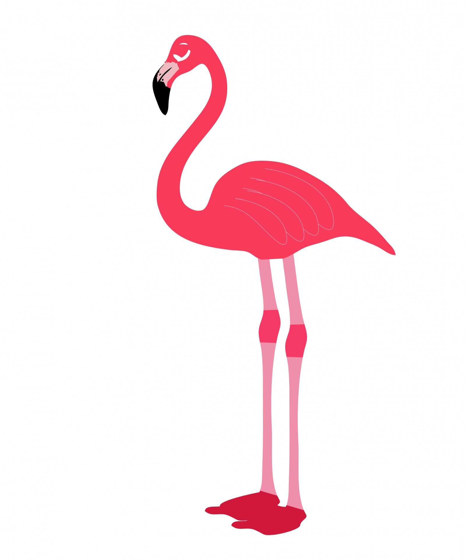 Flamingo clipart Stock Flamingo Clipart Photo Public