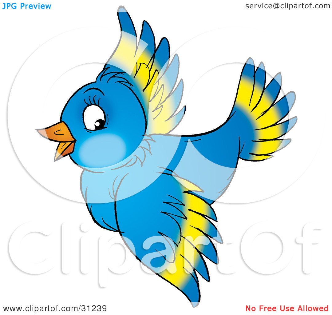 Wings clipart colorful bird Bird clipart Images Clipart flying