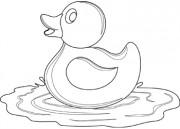 Floating clipart water splash Art Clip clip art duck