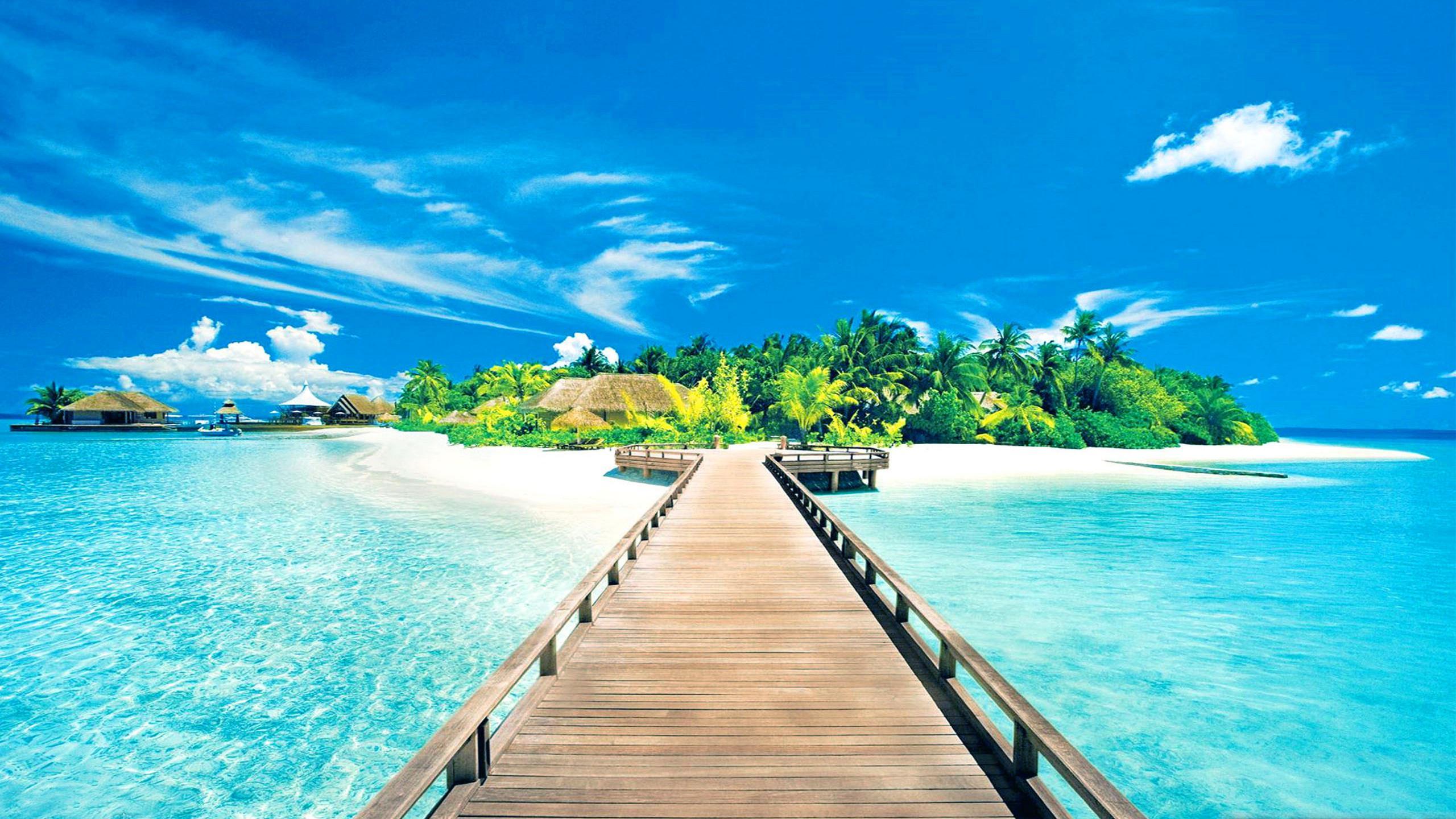 Wallpaper clipart tropical Beach Island Tropical  Island