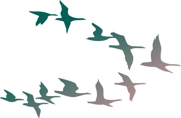 Flock Of Birds clipart Bird Flock flying Images: of