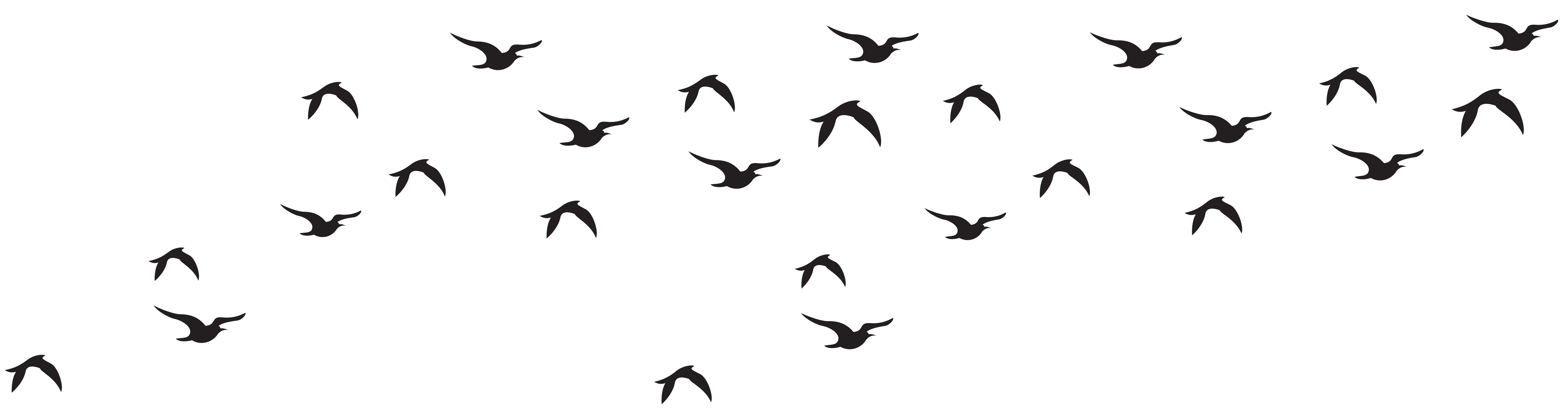 Flock Of Birds clipart Of photo#25 Birds Flock Flock