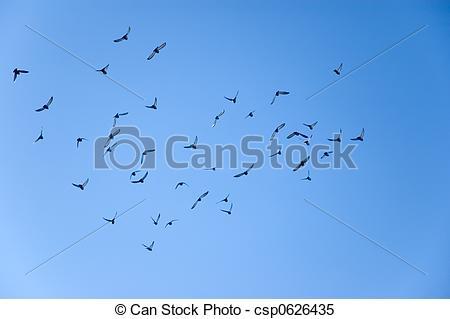 Flock Of Birds clipart Of away of winter flock