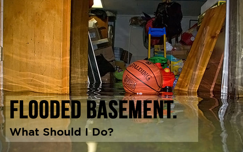 Flood clipart flooded basement Mold And House Home Does