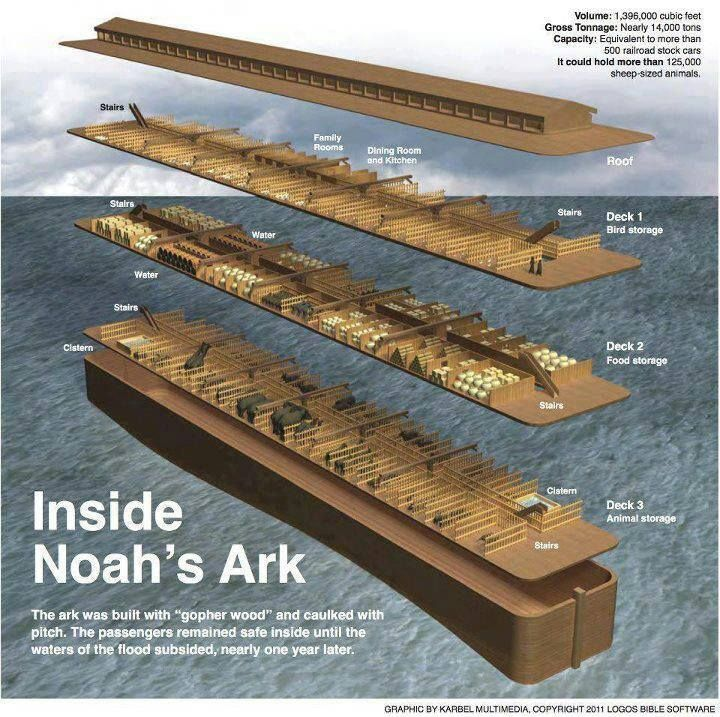 Flood clipart noah building ark Structural about Infographic 438 on