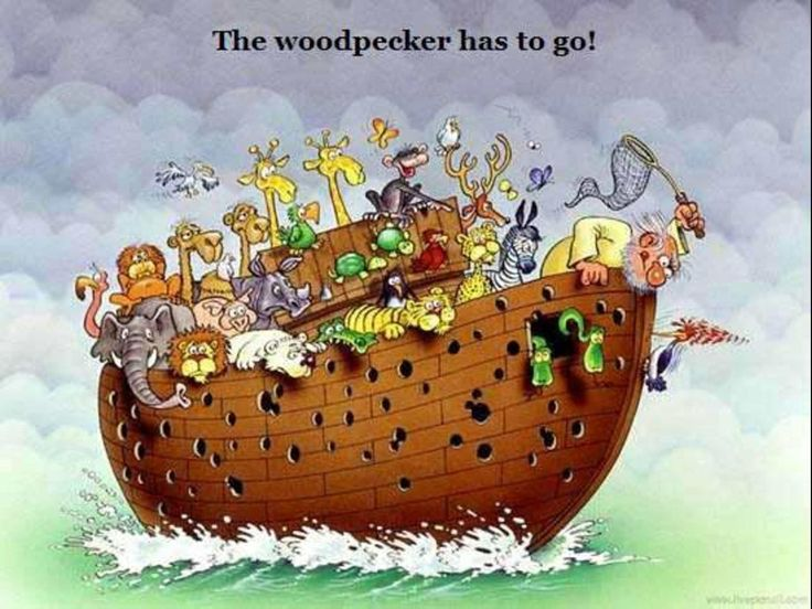 Flooded clipart noah and the flood And best on about The