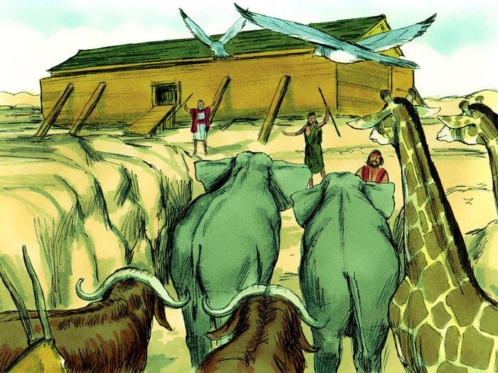 Flooded clipart noah building ark #14