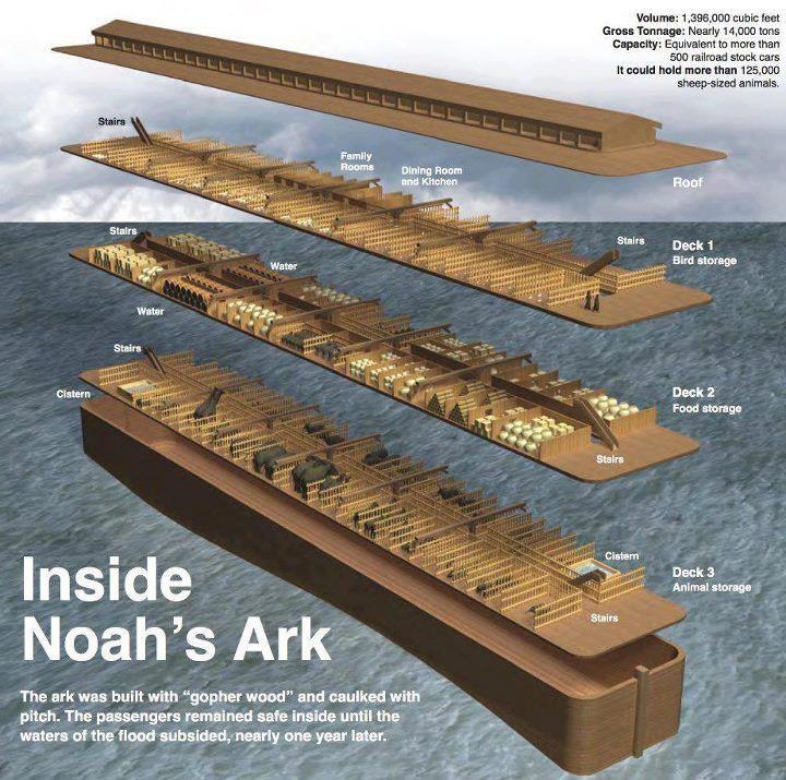 Flooded clipart noah building ark #12