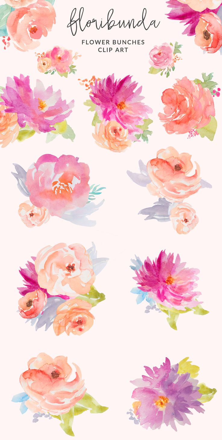 Peony clipart flower bunches Floral  Watercolor · Art