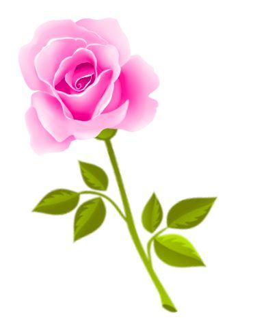 Beautiful clipart beautiful flower ArtFlower ClipartBaby RosesBeautiful flowers Art