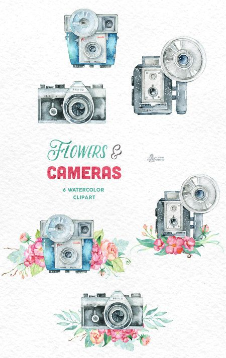 Camera clipart wedding photography Images & by Handpainted 6