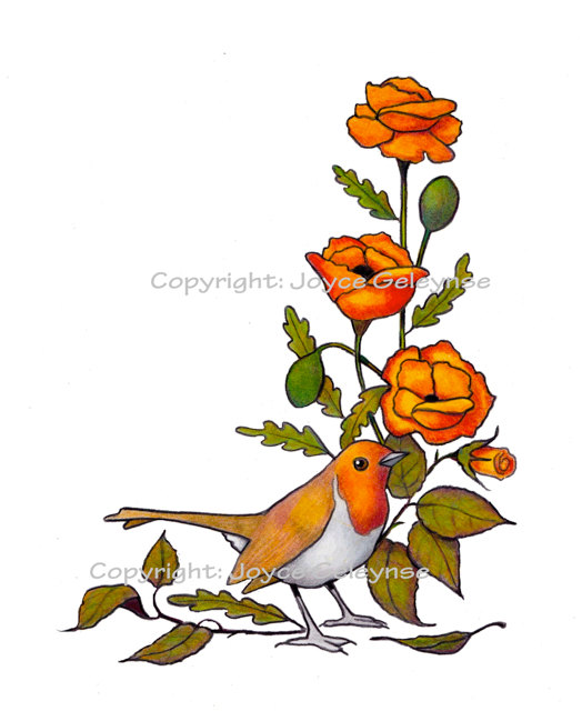 Drawn robin pencil Pencil Hand English Clipart English
