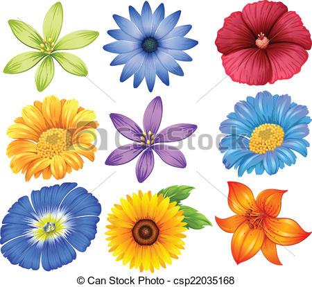 Illustration clipart colourful flower Illustration Colourful of flowers Colourful