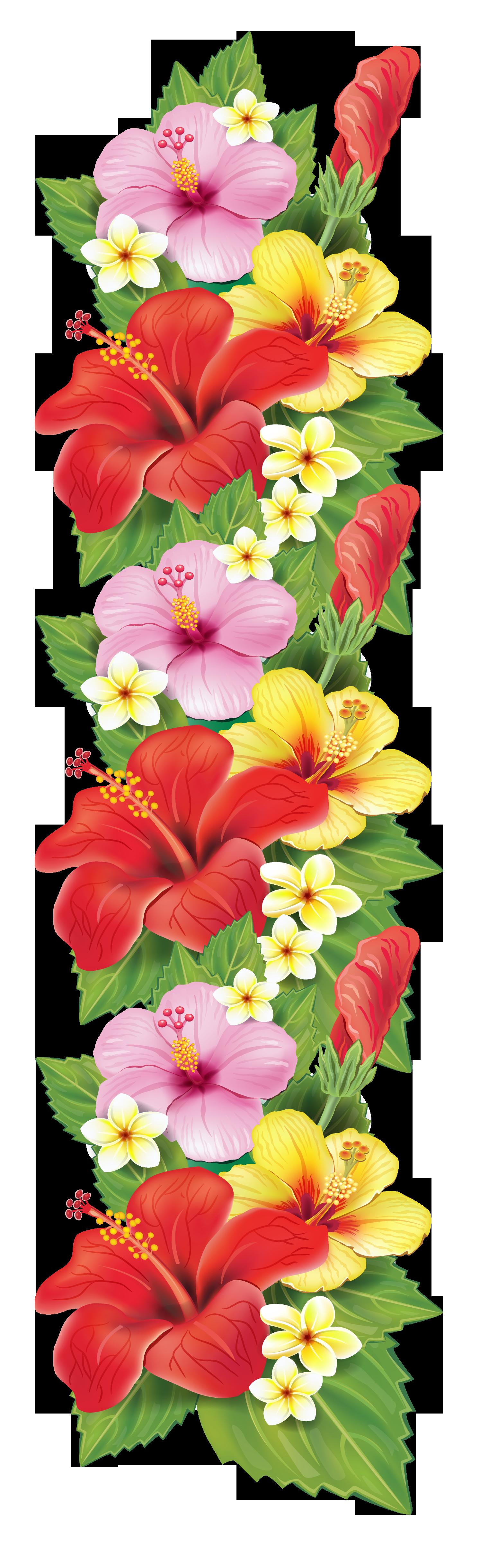 Caribbean clipart flower decoration Decoration Más · … Clipart