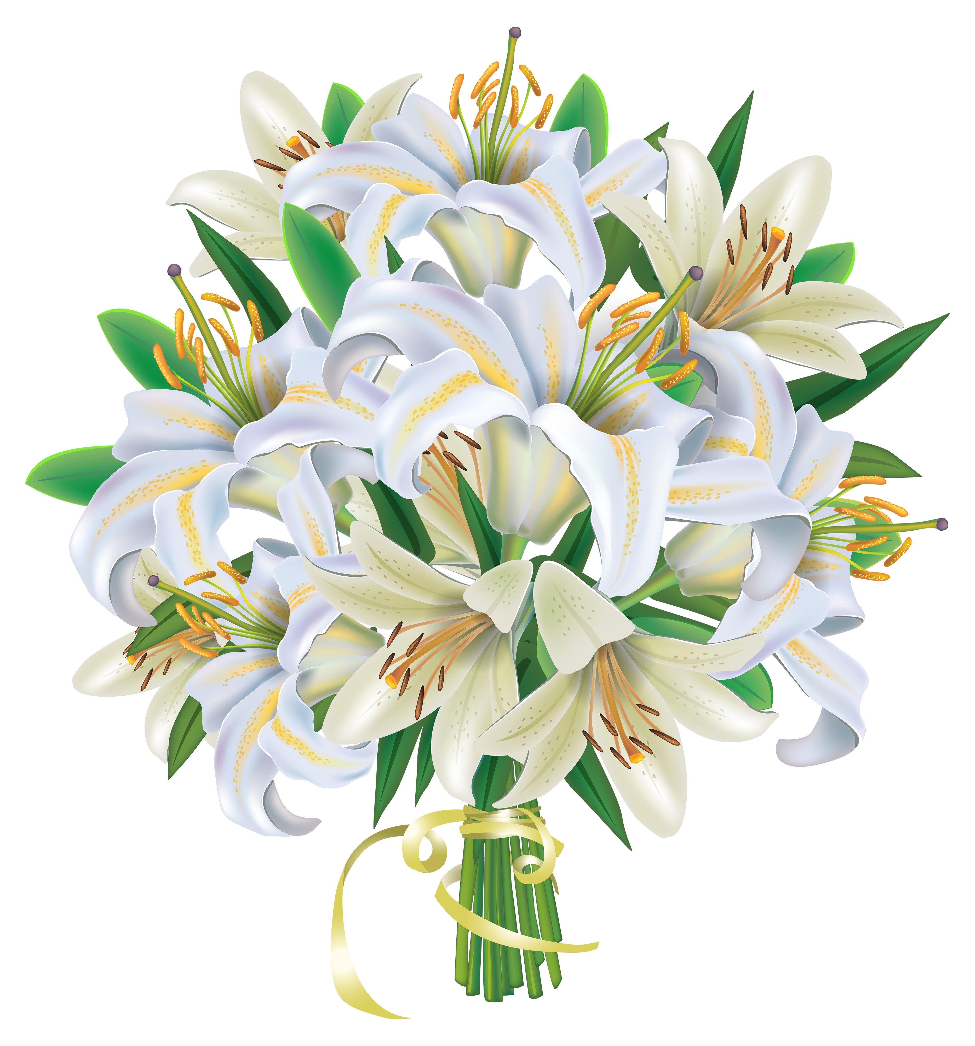 Elower clipart white lily Clipart clipart frame art bouquet