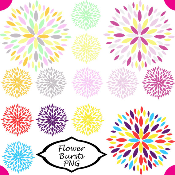 Floral clipart flower burst Set Clipart of of 14