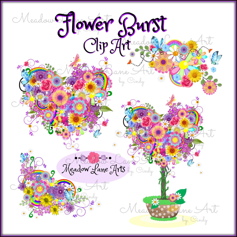 Floral clipart flower burst Digital file  a Burst
