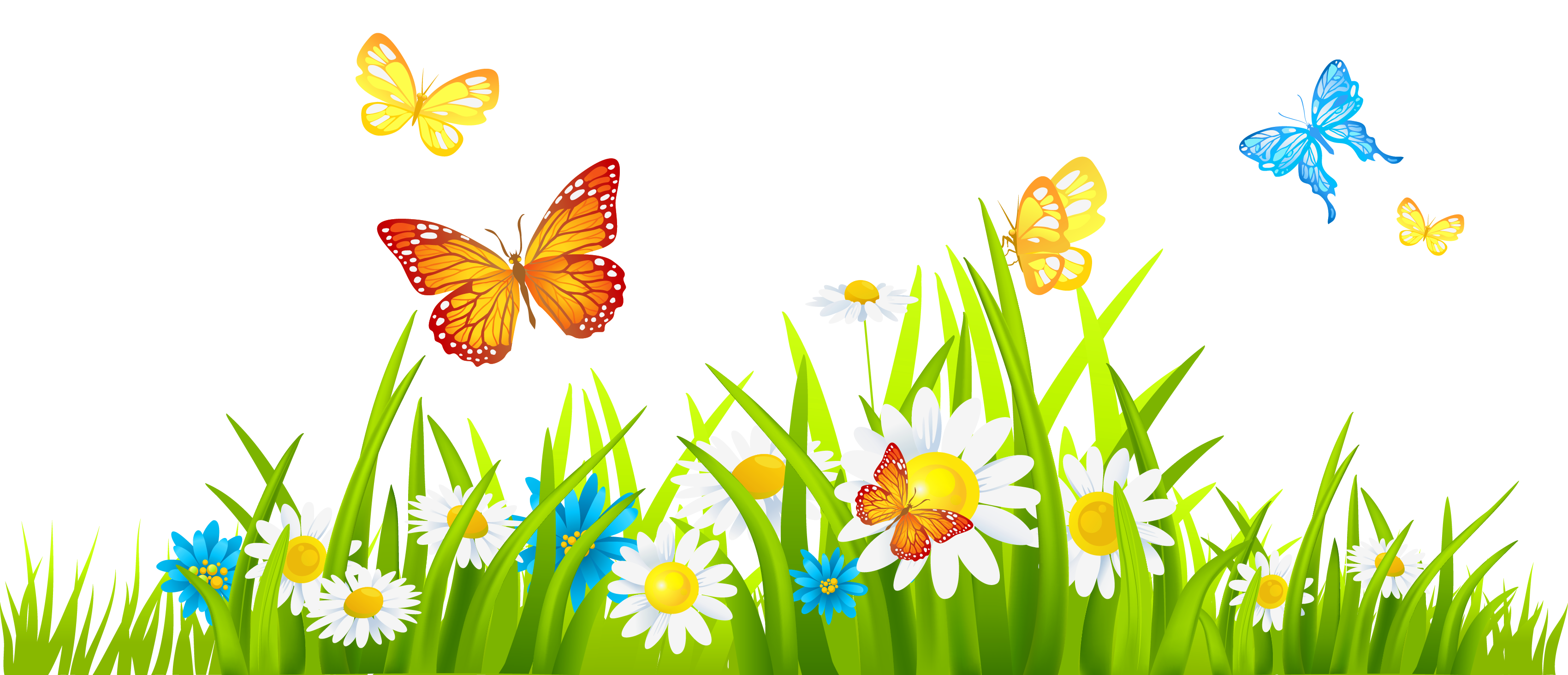 Tulip clipart butterfly #5