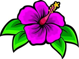 Pink Flower clipart hawaiian flower Hibiscus art Art collection Image