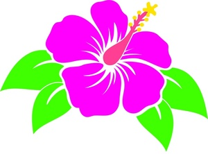 Tropical clipart hawaii #9