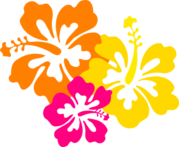 Buttercup clipart hawaiian flower Grouped Flowers  Hibiscus as: