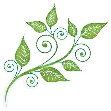 Floral clipart leafy vine In vine colors about leafy
