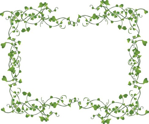 Ivy clipart decorative Assorted Vector decorative Ivy Vines