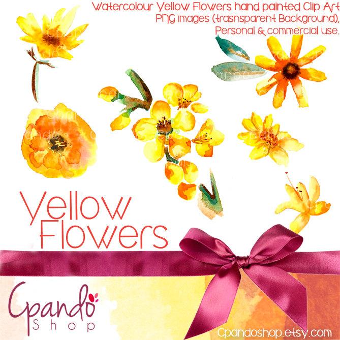 Floral clipart nature 6 Clip (Png clipart floral