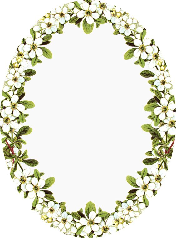 Floral clipart oval Art Clip Vintage Download Frame