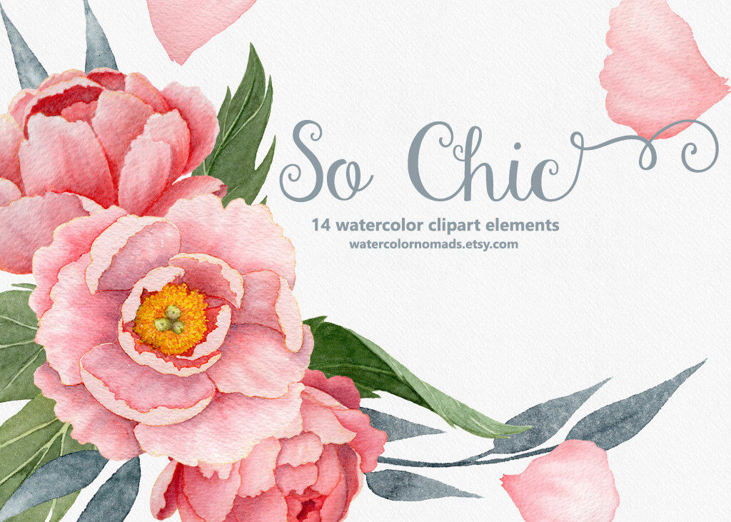 Floral clipart pink flower Clipart Watercolor clipart clipart